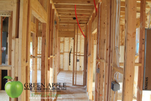 Zephyr Homes - Urquhart Street, New Orleans, LA - Spray Foam Insulation 14