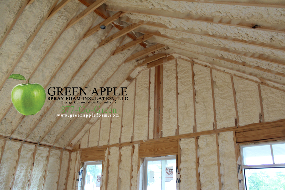 Residential home zephyr homes new orleans la green for New home insulation