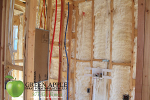 Zephyr Homes - Urquhart Street, New Orleans, LA - Spray Foam Insulation 15