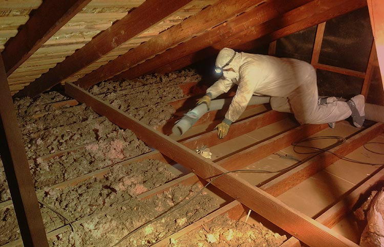 Should I Remove Old Attic Insulation Before Spray Foam Green